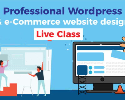 Professional WordPress & e-Commerce website design