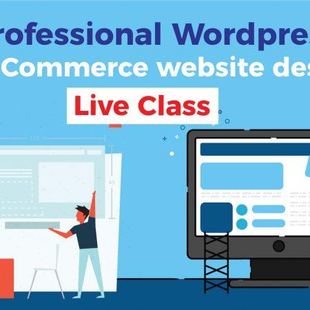 Professional WordPress & e-Commerce website design